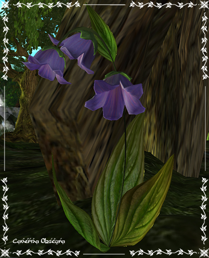 Bluebells Flowers by Caverna Obscura