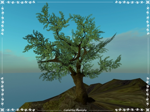 Silver Tree by Caverna Obscura