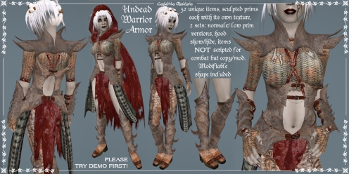 Undead Female Warrior Armor Set by Caverna Obscura