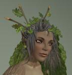 Oak Dryad Skin04