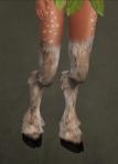 Faun Legs09