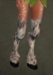 Faun Legs10