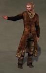 Gildor Outfit BROWN06